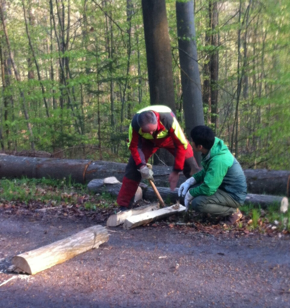 ドイツ森林管理の研修